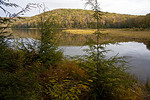 Mt. Spring Lake