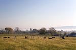 Kisacoquillas Valley Farms