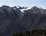Mt. Olympus from Hurricane Ridge