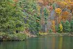 Whipple Lake