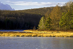 Black Moshannon Lake