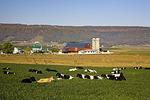 Kisacoquillas Valley Farm