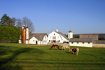 Lahaska Farm
