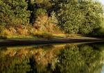 Lake Marburg Shoreline