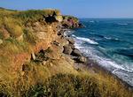 Rocky shore on Bonaventure Island