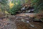 Crouse Run Along the Rachel Carson Trail