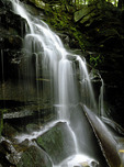 Dutchman Falls along the Loyalsock Trail