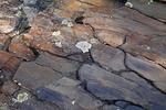 Fractured Sandstone