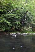 Neshannock Creek