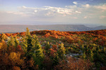 North Fork Mountain from Dolly Sods