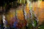 Autumn Reflection on Bushkill Creek