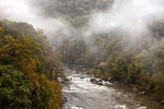 Fog forming along the Youghiogney River