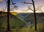 Pine Creek Gorge near Barbour Rock