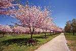 West Fairmount Park, Philadelphia