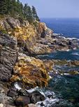 Rocky Shore at Acadia National Park