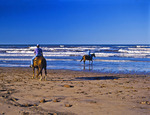 Horseback Riding in the Surf