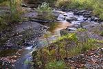 East Branch Wallenpaupack Creek