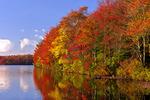 Tobyhanna Lake