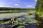 Promised Land Lake
