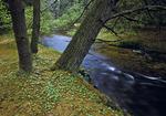 White Deer Creek