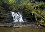 Waterfalls, Salt Springs State Park