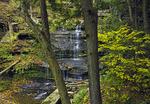 Little Fourmile Run Falls