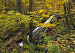 Waterfalls, Worthington State Forest
