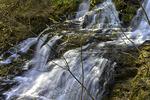 Fourth Falls on Hornbecks Creek