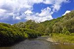 Lackawaxen River