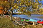 Moored Boats, Frances Slocum Lake