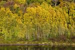 Prompton Lake
