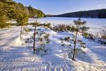 Black Moshannan Lake in winter