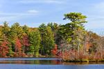 Peck Pond, Autumn