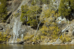 Shale Barren & Raystown Branch of the Juniata River