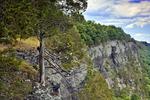 Raymondskill Cliffs