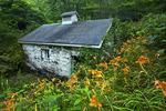 Cold Spring Farm & Owens Springhouse