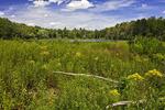 Lechs Pond