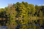 Stuckys Pond (aka: Sunny Hill Lake)