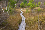 Boardwalk Hiking Trail