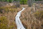 Boardwalk Hiking Trail