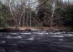 Bushkill Creek in Spring