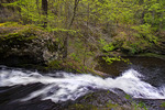 """""""First Falls"""" on Hornbecks Creek"""