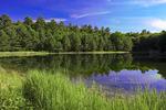 Fassler Pond