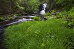 Raymondskill Creek