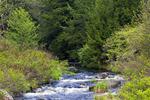 Upper Lehigh River
