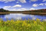 Lower Klondike Pond