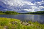 Lower Woods Pond