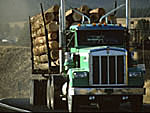 Logging truck on Idaho rural highway