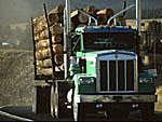 Logging truck on Idaho rural highway
