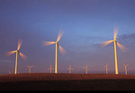 Wind turbines, strong morning light